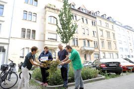 Bürgermeisterin Bettina Lisbach, Doris Fath, Jürgen Unger, Ulrich Kienzer stehen um einen Baum
