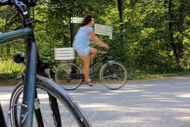 Auch auf dem Fächerstraßen im Hardtwald gilt für Radfahrer die Rechts-vor-Links-Regel.