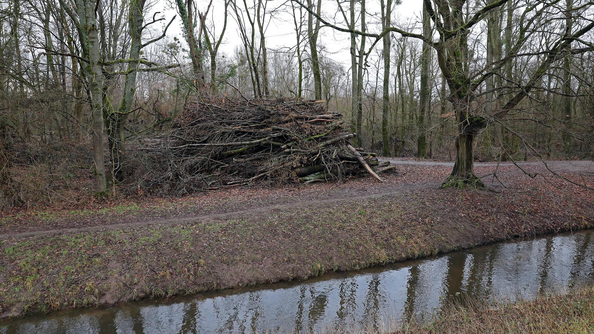 Durcheinander: Im Weiherwald herrscht derzeit stellenweise eine gefühlte Unordnung. Anwohner klagen über umfangreiche Fällungen in den vergangenen Jahren.
