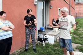 Andreas Gold (rechts) und Stadträtin Petra Lorenz (Mitte) versuchen mit Argumenten und ihren Hunden, Gartenbauamtsleiterin Doris Fath (links) von den Vorzügen einer umzäunten Hundewiese am Schloss Gottesaue zu überzeugen.