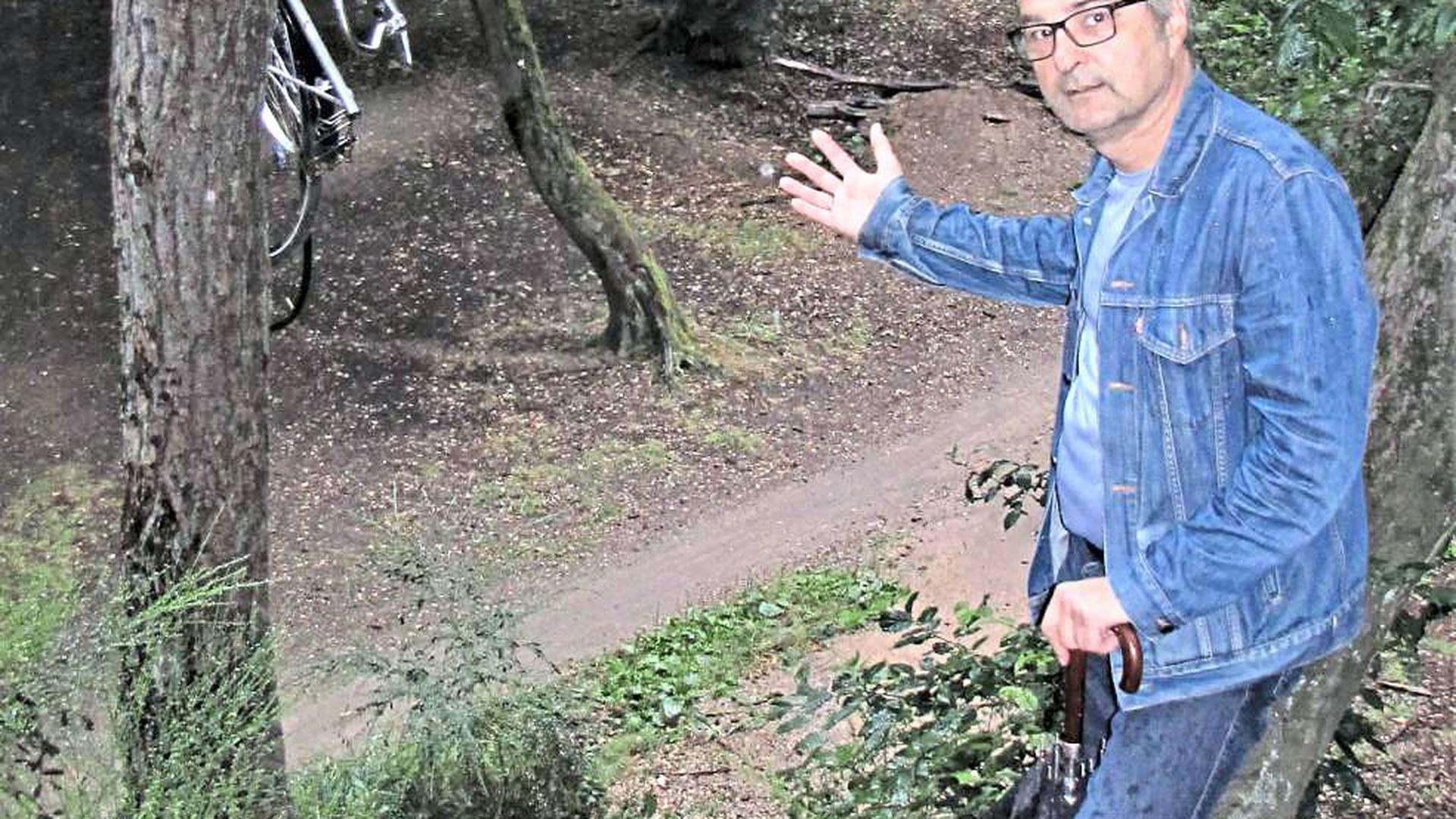 Sieben Hügel im Ettlinger Wald