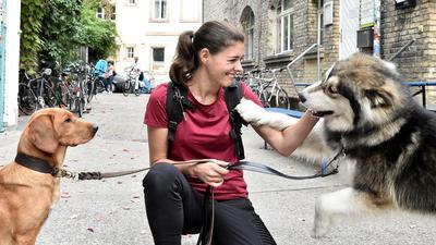 """Die Hundebetreuerin Petra Guntermann mit ihrem Hund Aki (links) und dem """"Gassi-Hund"""" Aray (rechts)."""
