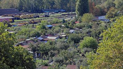 Blick über die Kleingartenanlage Durlacher Allee
