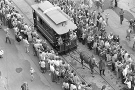 ÖPNV in früherer Zeit: Mit nur einer Pferdestärke ging es zwischen 1870 und 1900 durch die Kaiserstraße. Dann wurden die Bahnen elektrisch.