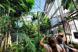 Tag des offenen Denkmals- Gewächshaus des Botanischen Gartens vom KIT beim Adenauerring
