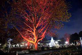 Friedrichplatz. Weihnachten. Weihnachtsbeleuchtung. Pyramide. (Symbolbild).