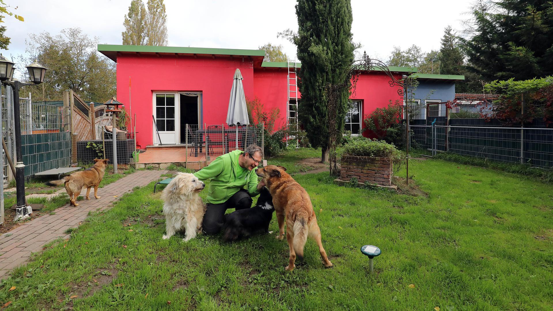 Stephan Winterhoff steichelt zwei seiner Hunde