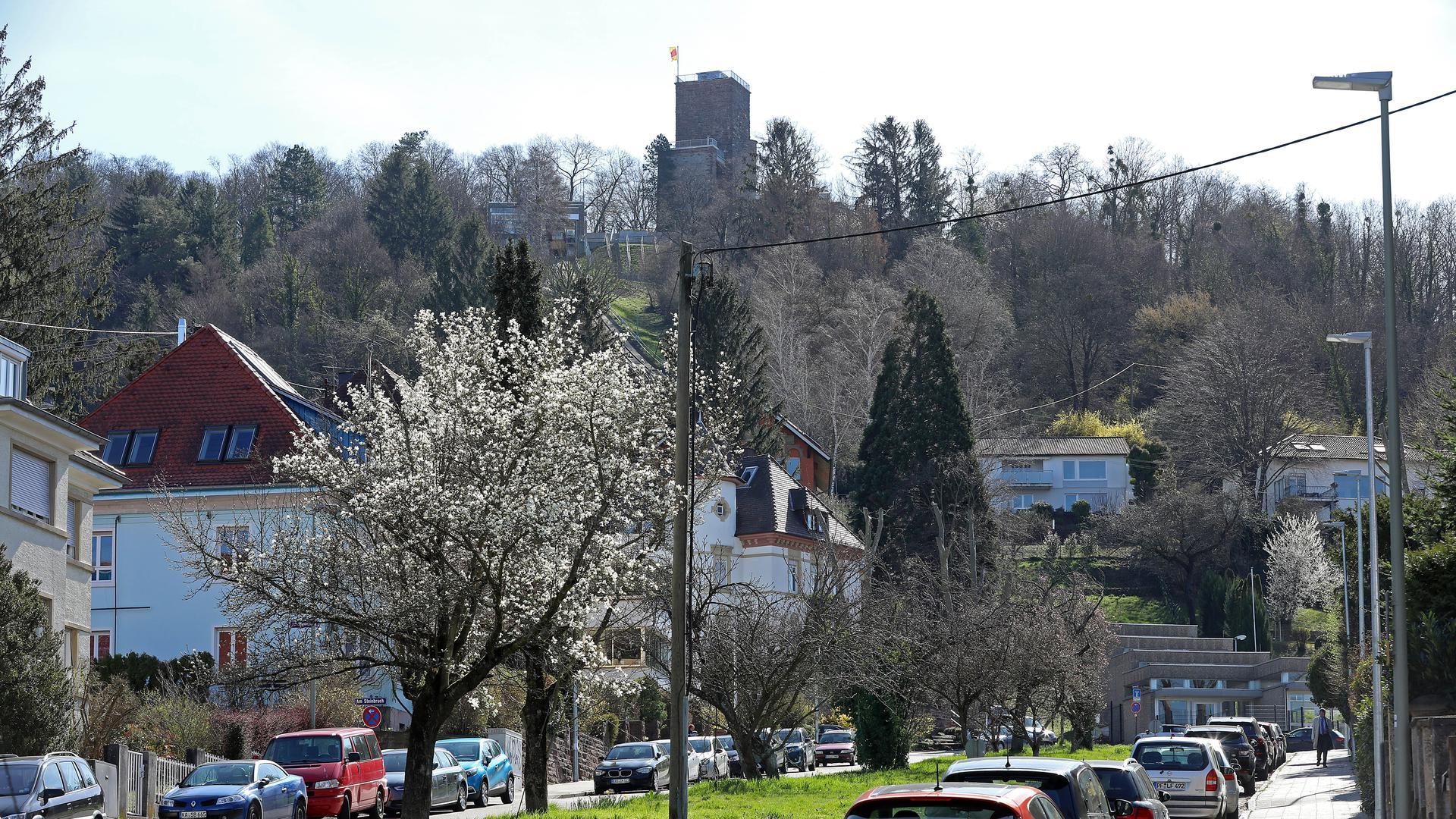 29.03.2021 Bergbahnstraße in Durlach mit beginnender Magnolienblüte. Geplant ist, dass dort ab 2024 die Verlängerung der Turmbergbahn bis zum Hangfuß verläuft.
