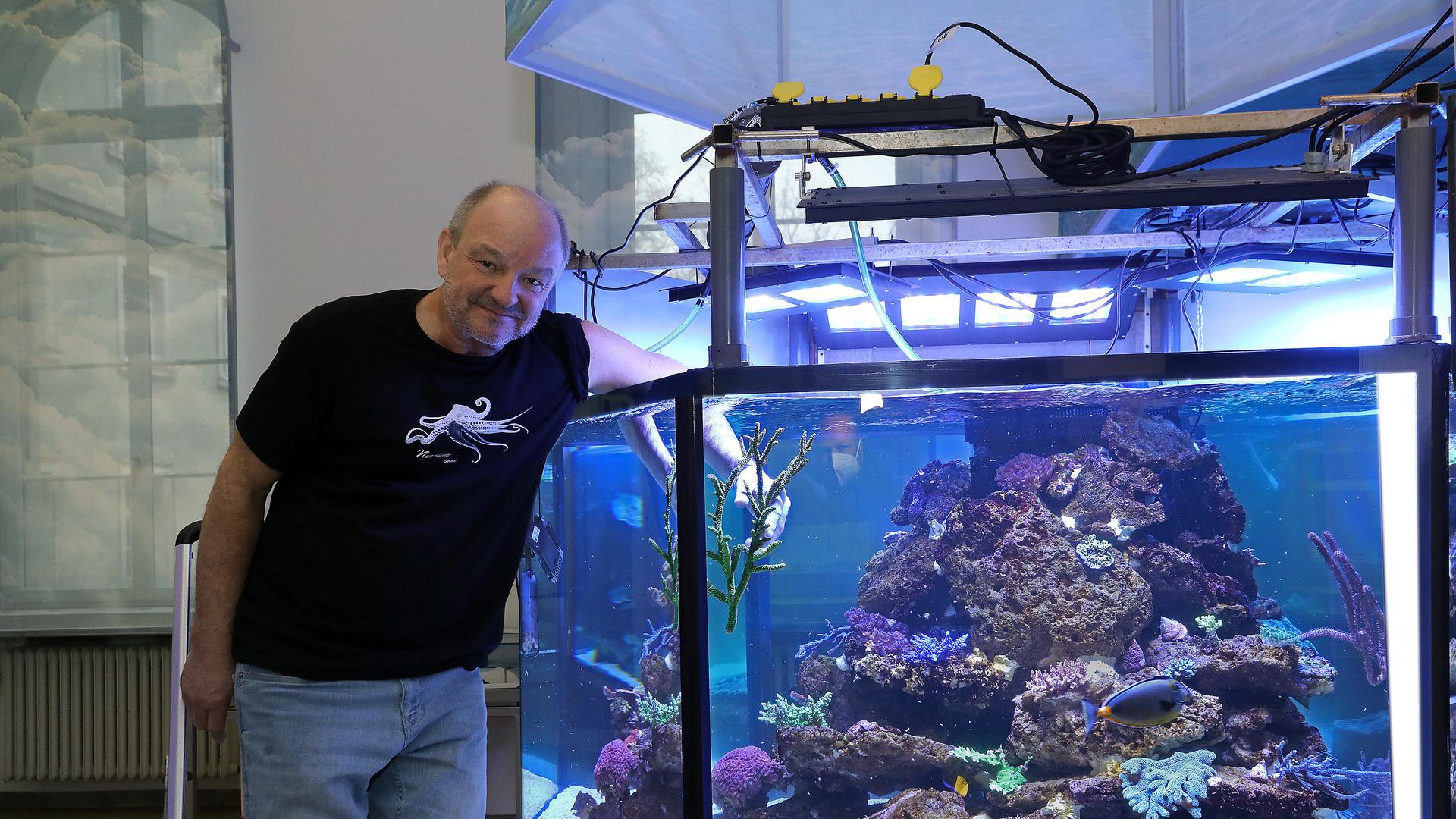 22.12.2020 Staatliches Naturkundemuseum Karlsruhe: Neues Sechseckbecken mit Korallen. Der Leiter des Vivariums, Hannes Kirchhauser, setzt eine Hirschgeweihkoralle ein.