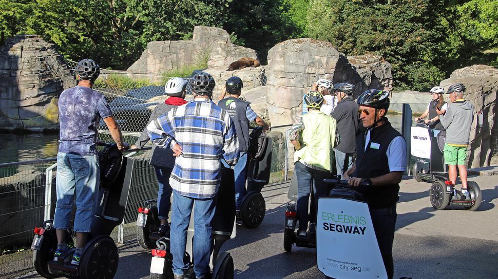 Segway-Tour durch den Zoo, mit Cityseg-Chef Jürgen Reiss (vorne rechts) bei den Seelöwen