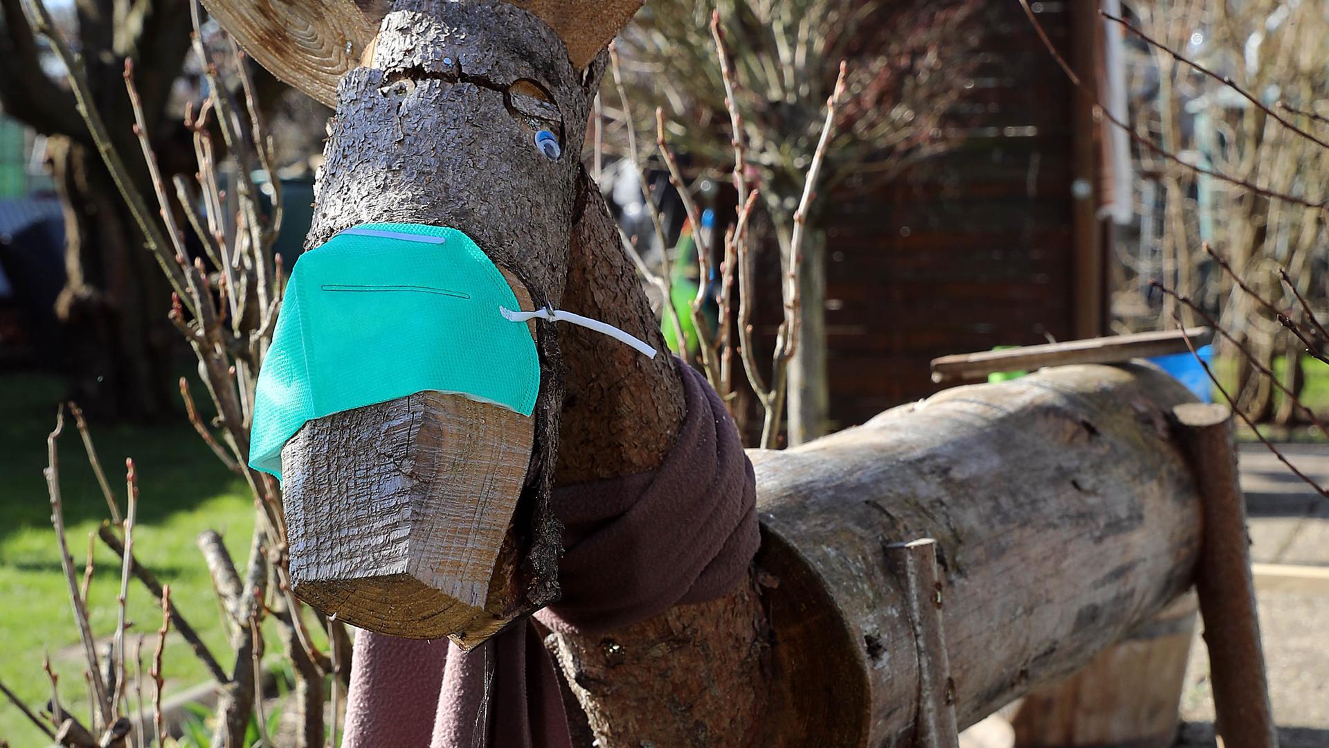 """Das Rentier """"Rudolph"""" in Bill Moores Garten trägt Maske."""