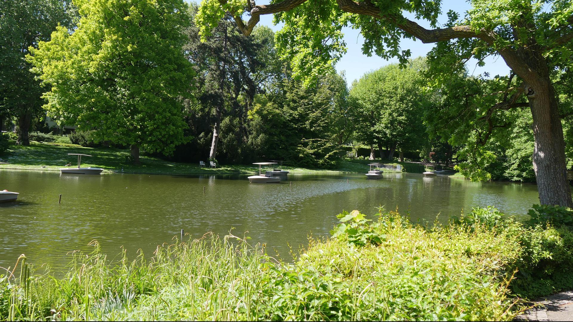Die Gondoletta-Boote im Zoo Karlsruhe