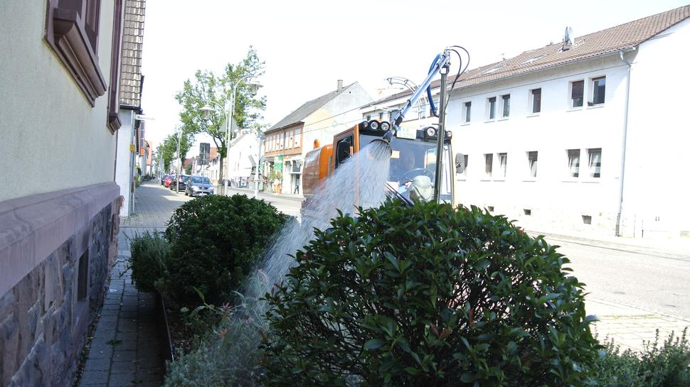 Bewässerung in Blankenloch