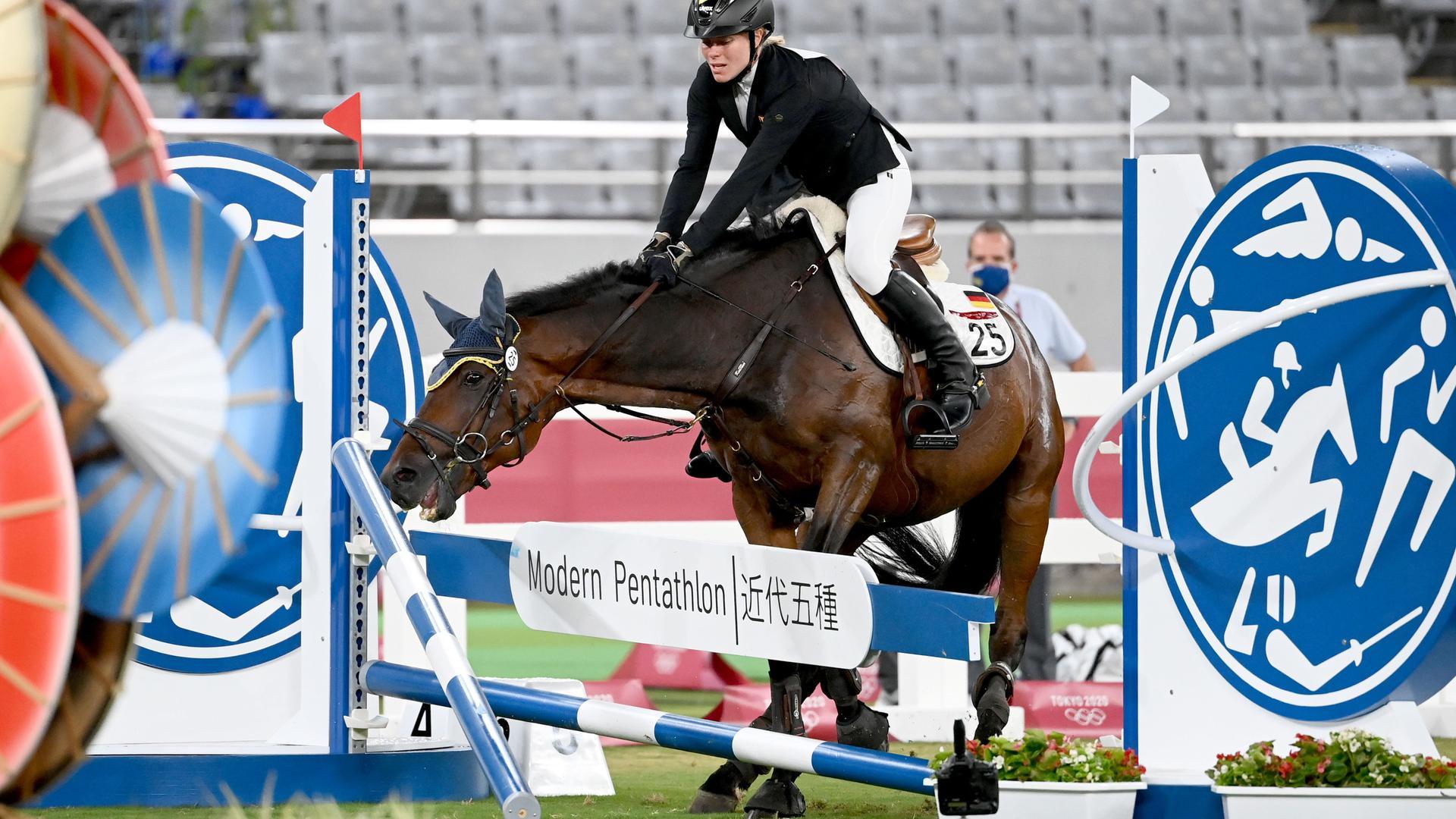 Pferd verweigert Sprung über Hindernis.