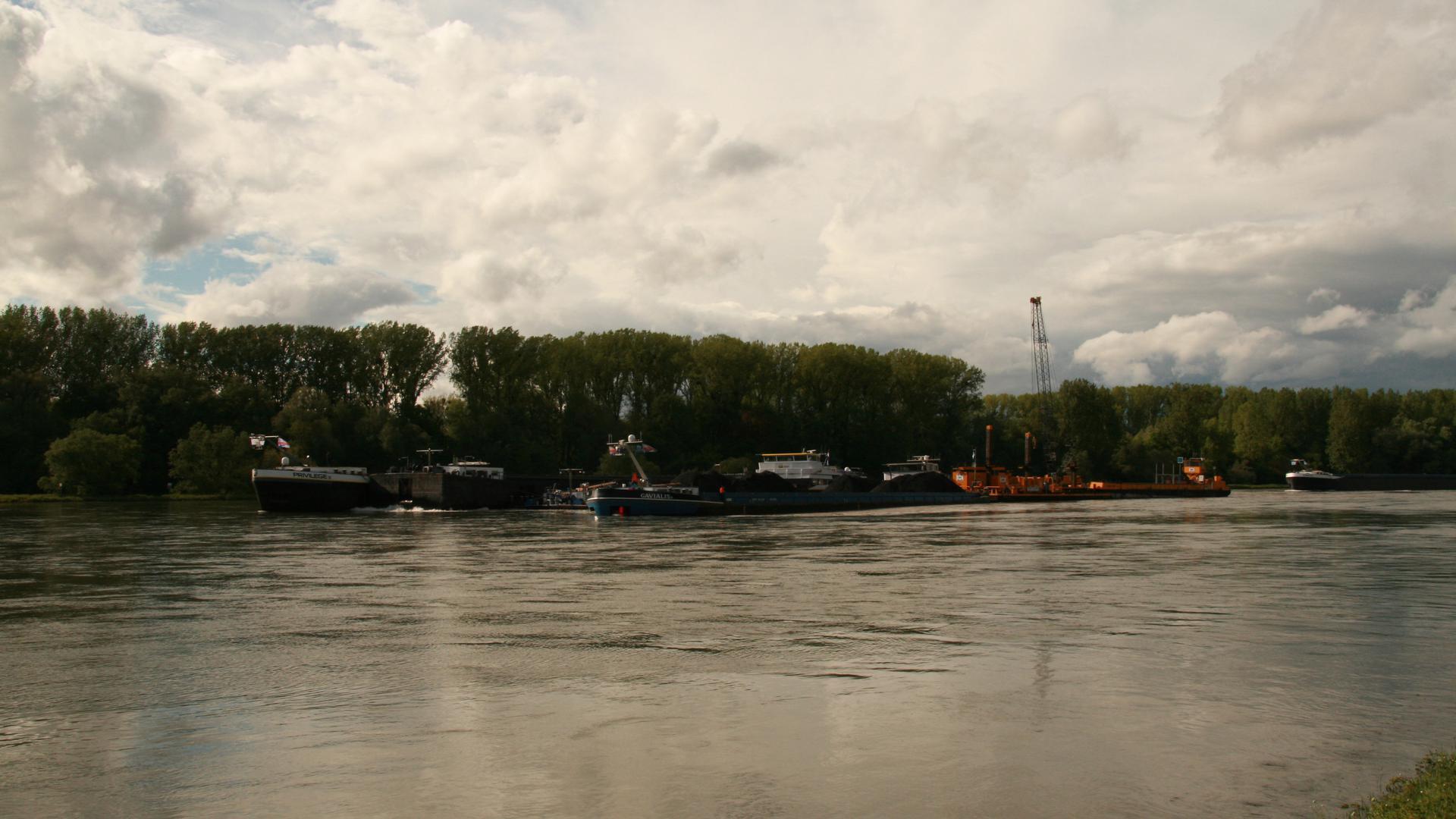 Kohlefrachter Rhein Dettenheim