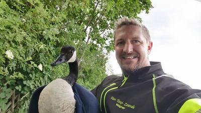 Tiertaxi-Betreiber Markus Wagner aus Stutensee mit einer kanadischen Wildgans