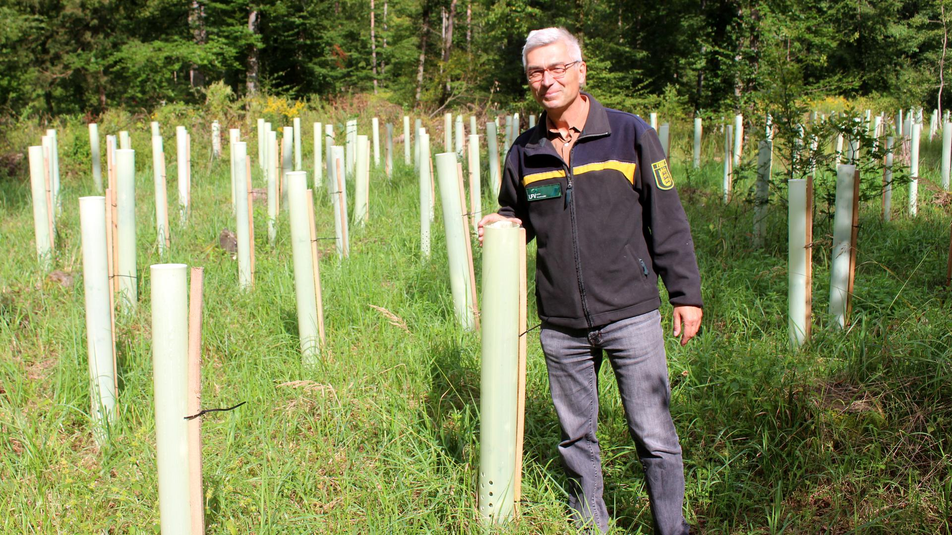 Martin Moosmayer, Leiter des Forstamts Kreis Karlsruhe, hier bei Neupflanzungen von Traubeneichen, Spitzahorn und Douglasien im Gemeindewald Graben-Neudorf.