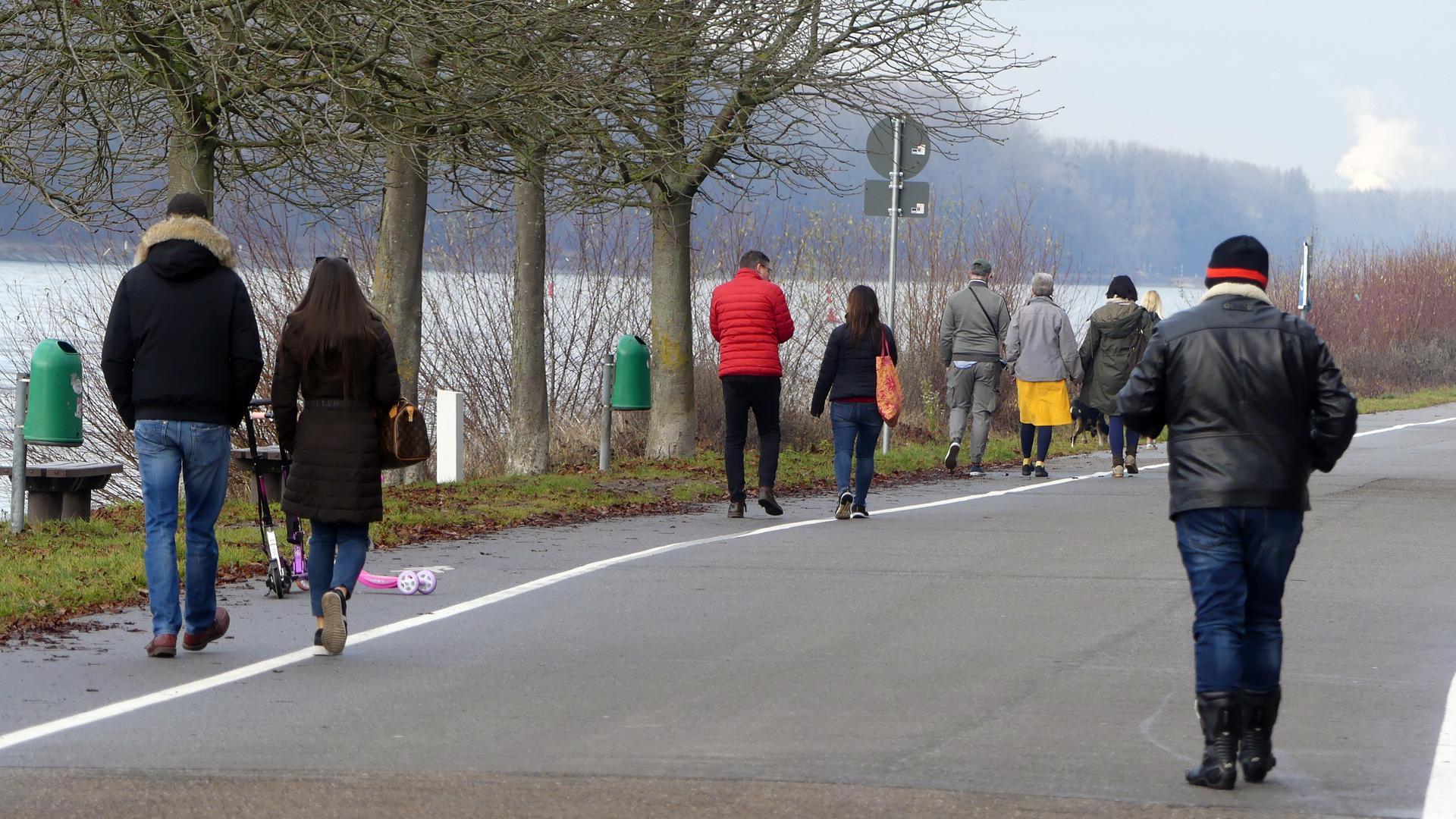 Rheinfähre Ausflug