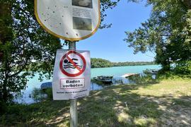 Baggersee Fuchs & Gros in Eggenstein wegen Bakterien im Wasser gesperrt, Bild vom 21.7.2021