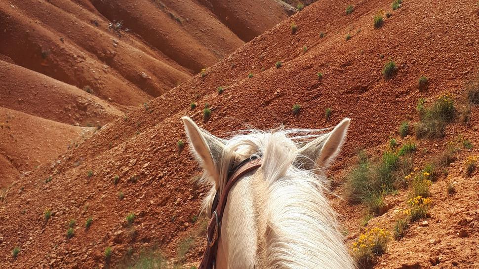 Ausritt Bryce Canyon