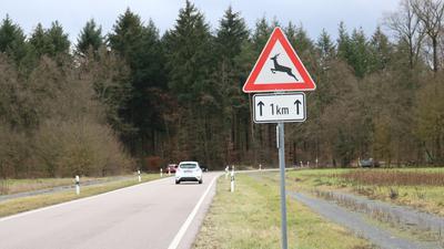Plötzlich kann es ganz schnell gehen: Im Landkreis Karlsruhe gibt es viele Landstraßen in oder in der Nähe von Waldstücken. Vor allem in der Dämmerung ist Vorsicht geboten.