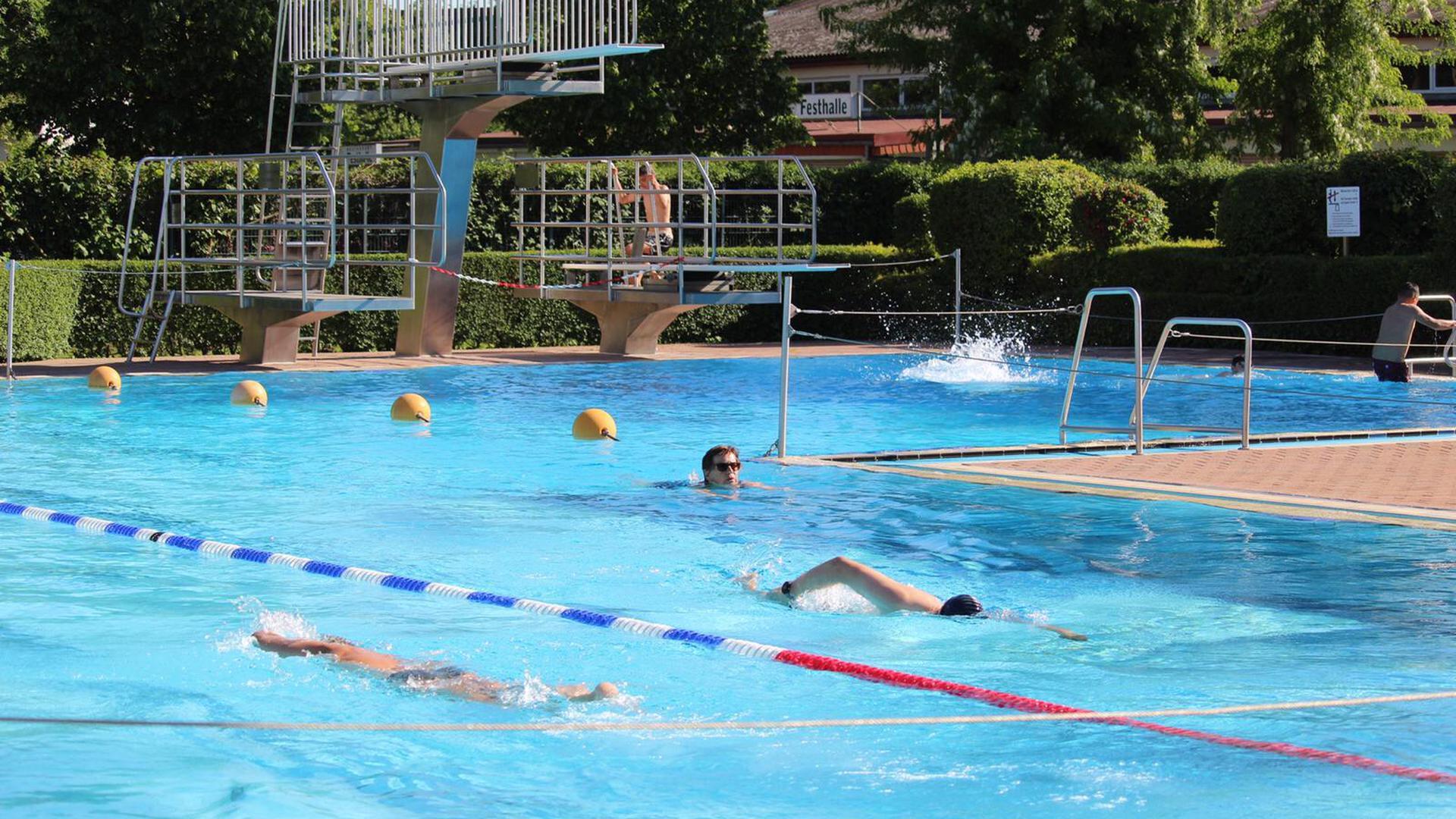 Schwimmer im Becken