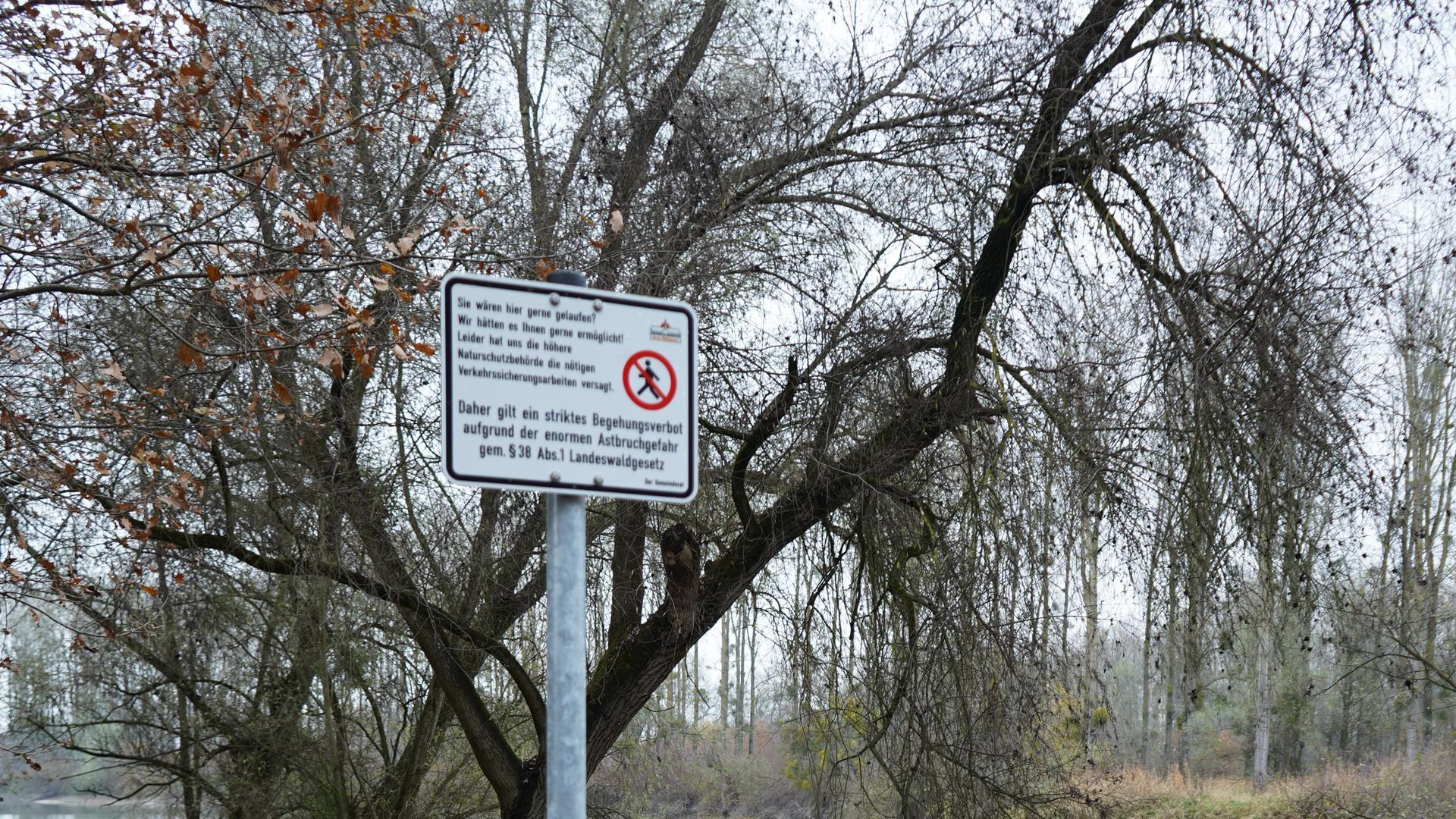 Schild am Anfang eines Weges, Bäume und ein Gewässer im Hintergrund und Laub auf dem Weg.