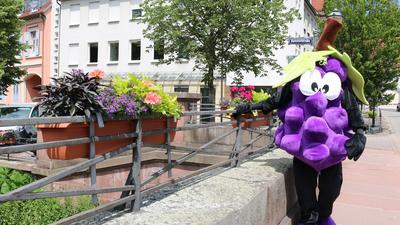 Auf der Marktbrücke: Das Träuble lebt im Herzen von Weingarten und ist Repräsentant der Gemeinde