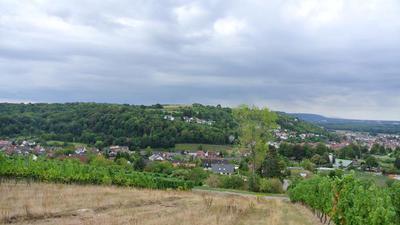 Ein Feld bei Weingarten