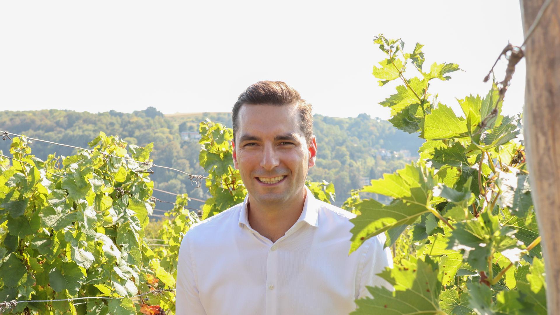 Nicolas Zippelius steht inmitten von Weinbergen.