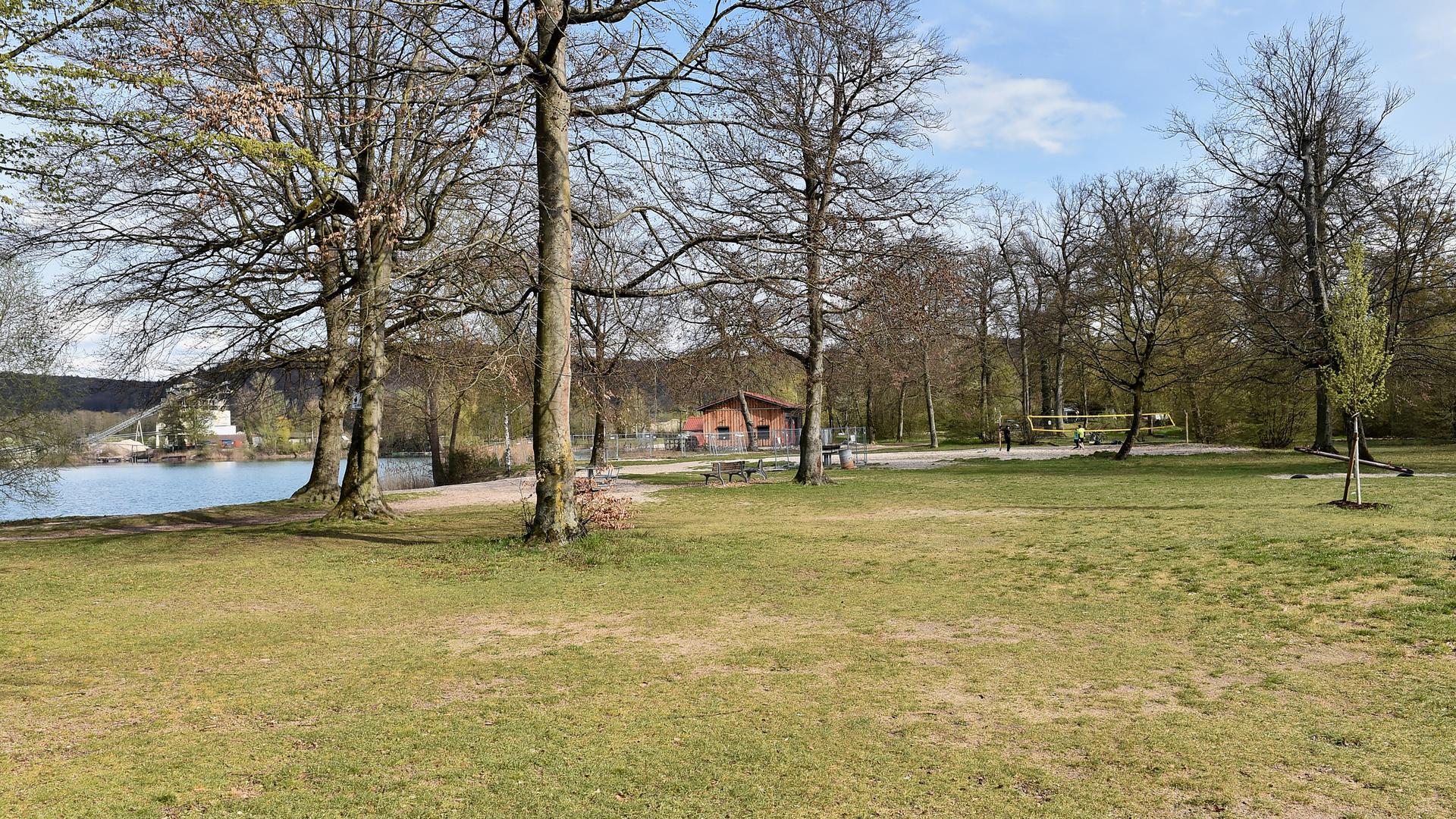 Liegewiesen und Bäume am Baggersee Weingarten, im Hintergrund ein Beachvolleyballfeld.