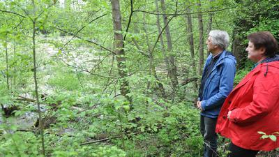 Naturschutzgebiet Hohwiesen