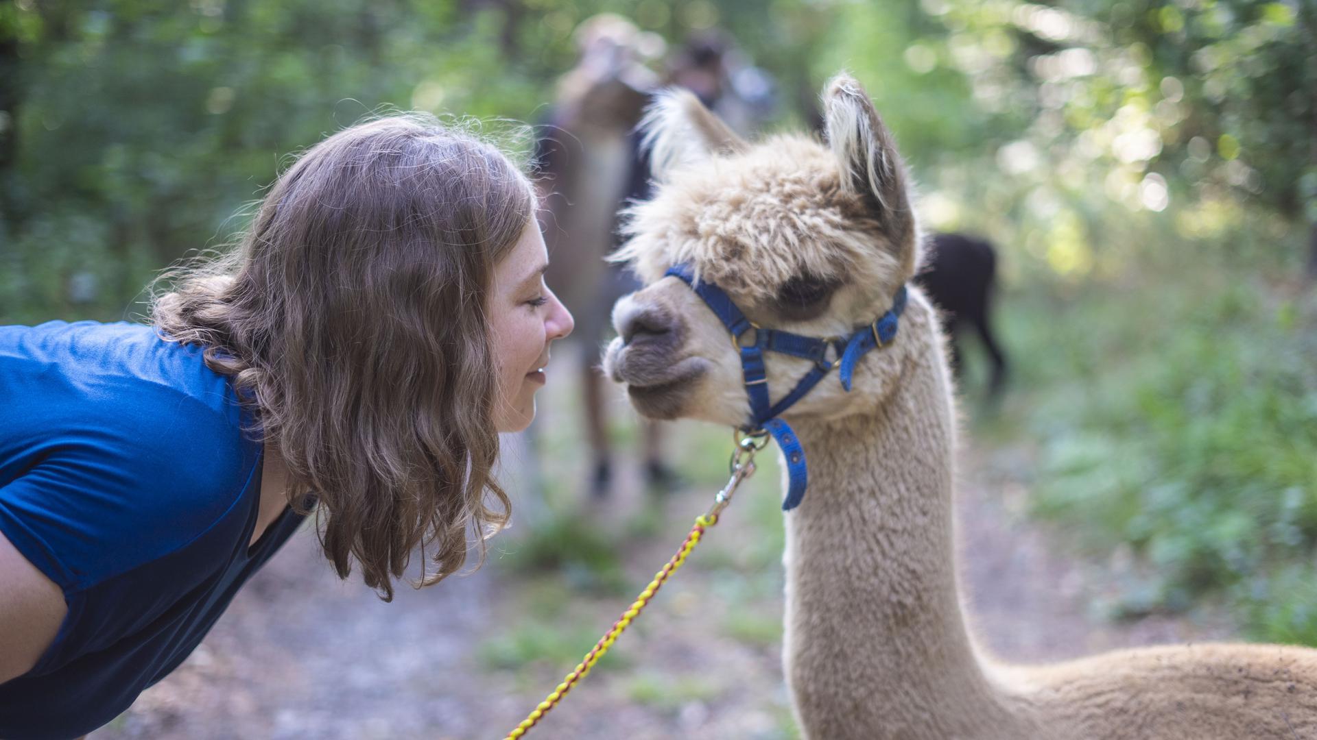 Laura Stockinger aus Karlsruhe ist großer Tier-Fan. Alpaka Oskar mag es, angeschnuffelt zu werden.