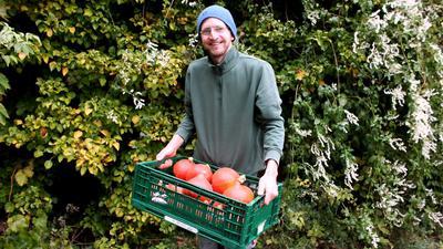 Mann mit Mütze (Florian Petrik) mit grüner Kiste und orangefarbenen Kürbissen.