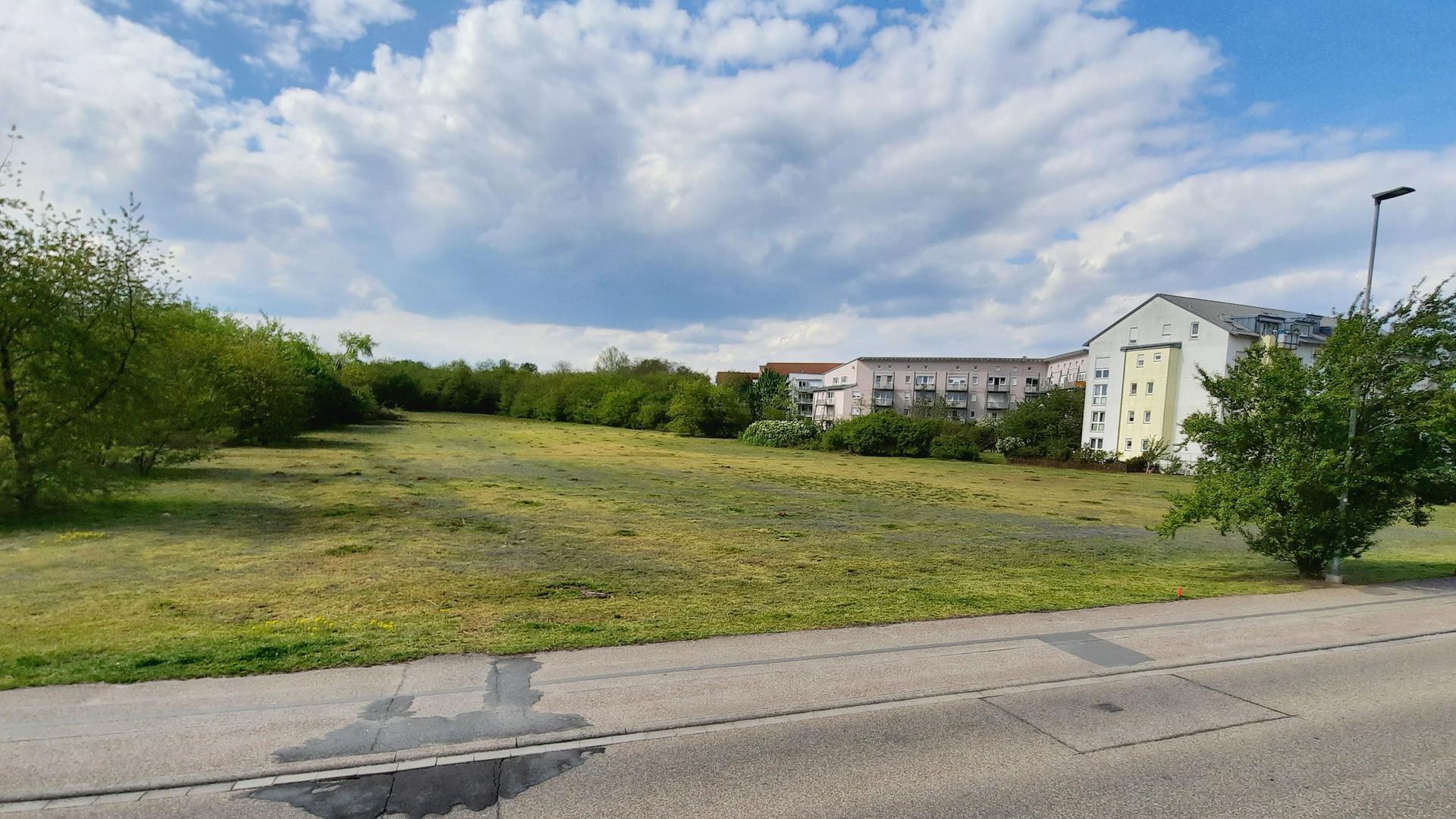 """Das Areal """"Kirchbühl"""" befindet sich zwischen der Forchheimer Ortsrandbebauung in der Straße Kirchbühl und dem Geschosswohnungsbau in der Weinbrennerstraße. Hier könnte bis Ende 2024 ein großes Baugebiet entstehen."""