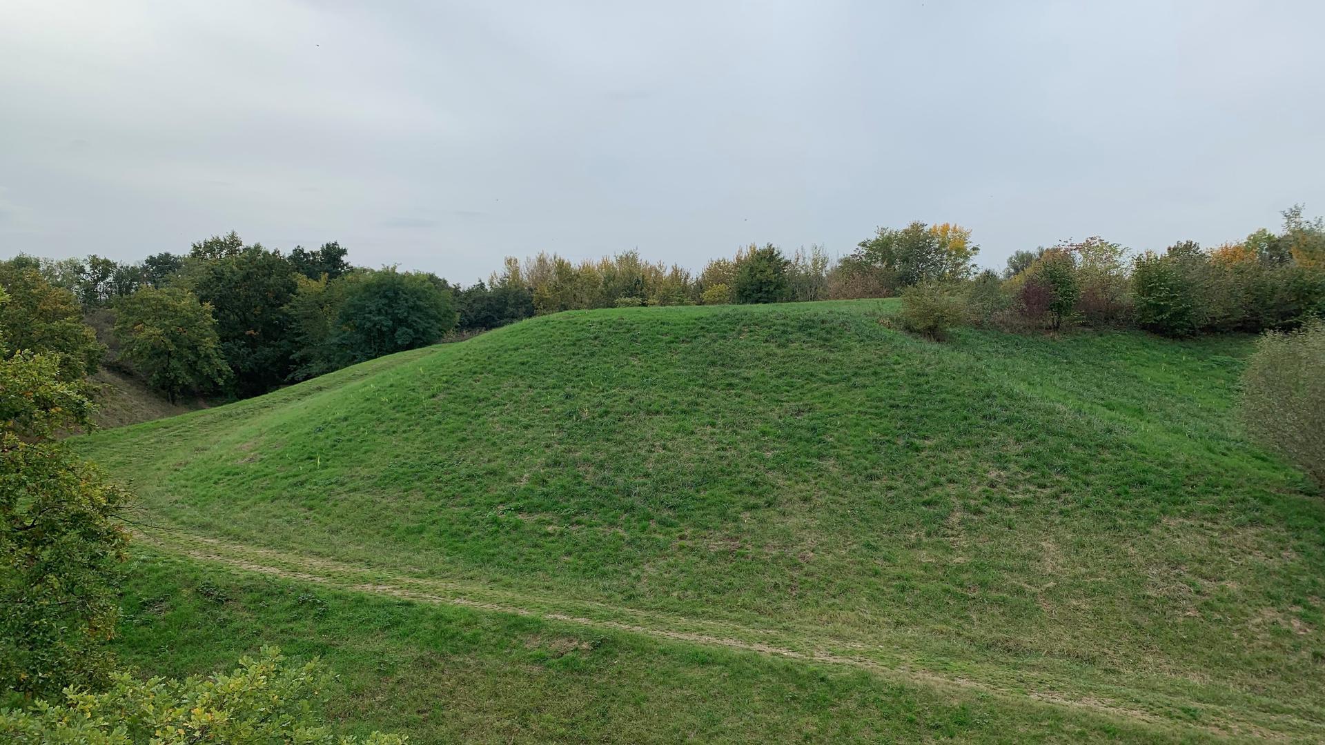 Leicht bergige Grünfläche