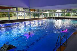 Ein Becken mit Schwimmern im Hallenbad in Rheinstetten-Forchheim
