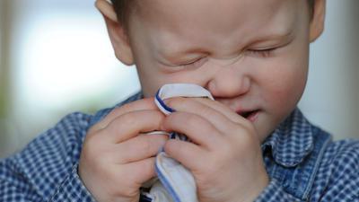 """ILLUSTRATION - Der zweijährige Clemens niest am Freitag (14.01.2011) in Bergheim in ein Stofftaschentuch. Einen wohlerzogenen Schniefer von einem rücksichtslosen zu unterscheiden ist gar nicht so einfach, denn die Benimmregeln haben sich über die Jahre geändert: was vor einigen Jahren noch als höflich galt ist heute schon tabu. Foto: Tobias Kleinschmidt dpa/lnw (zu dpa-Korr: """"<<Gesundheit!>> - Anständiges Niesen gehört zur Etikette"""" vom 16.01.2011) ++ +++ dpa-Bildfunk +++"""