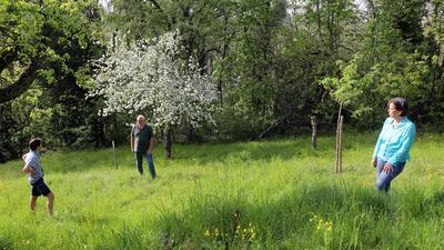Ein Stück vom Paradies: Auf Streuobstwiesen in Grötzingen blüht es dank Eiko Wagenhoff, Thomas Hauenstein und Ute Schmidt-Rohr (von links) über viele Wochen. Insekten werden satt und vermehren sich, auch Boden und Grundwasser profitieren.