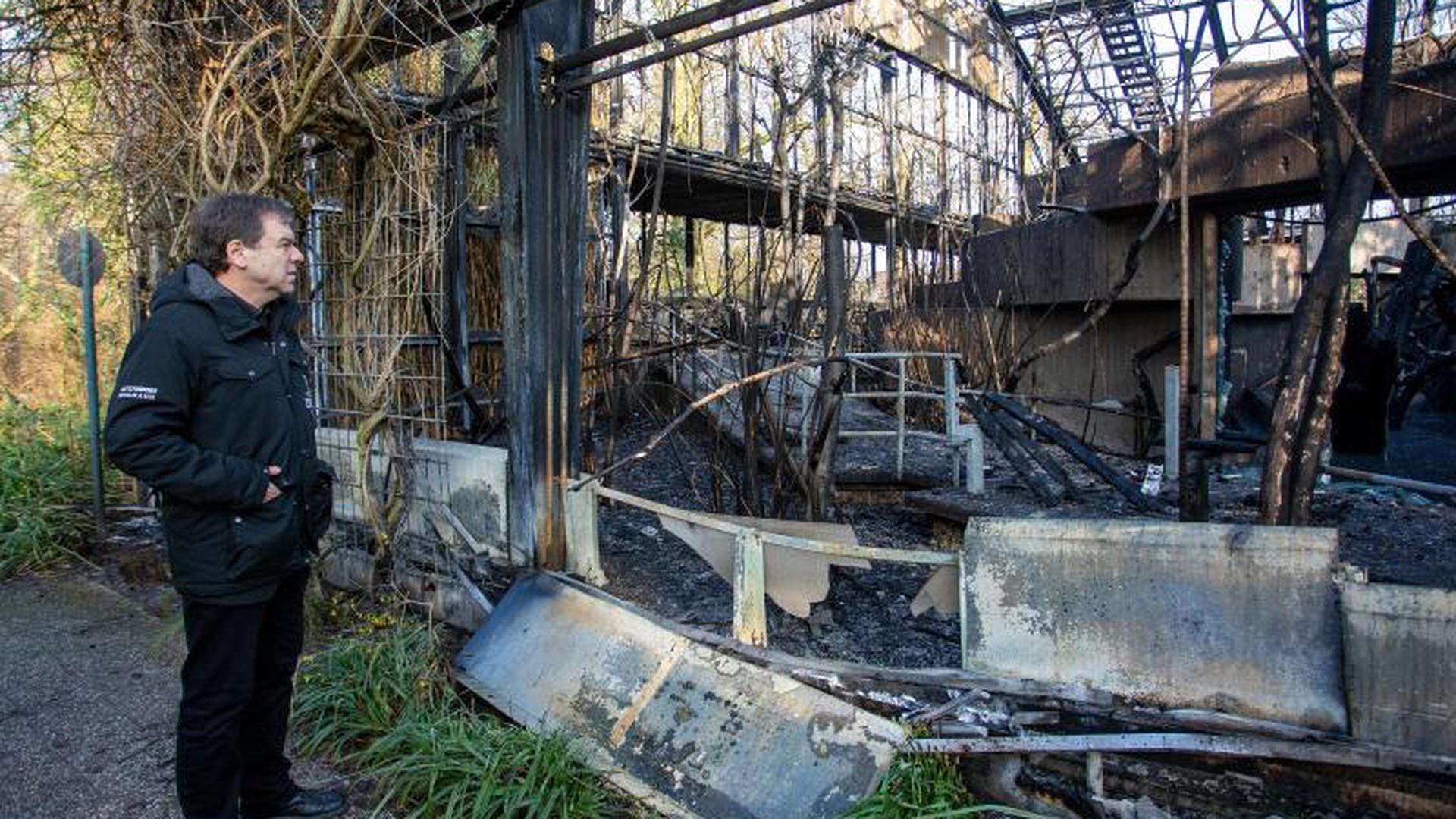 Überreste des Affenhauses