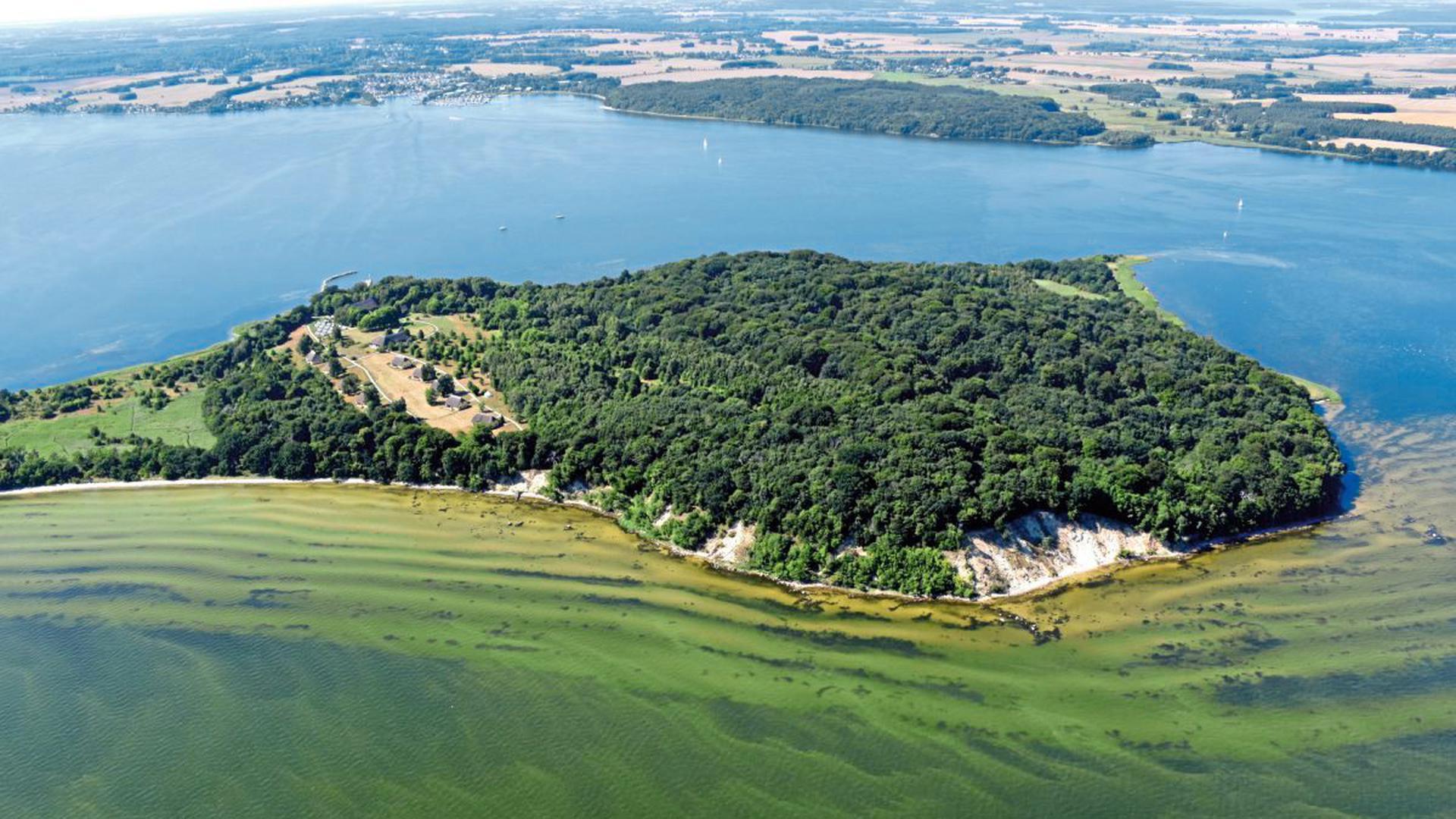 die Insel Vilm vor Rügen