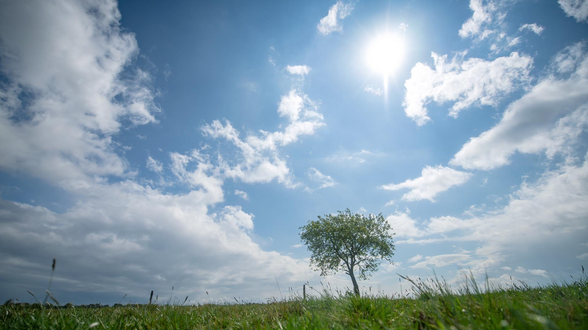 Aus der Natur ziehen Unternehmen und Privatleute Energie, um Strom im Landkreis Karlsruhe und benachbarten Regionen zu ziehen. Sonne und Wind, aber auch Wasser und Erdwärme gelten als Alternativen zum konventionellen Weg.