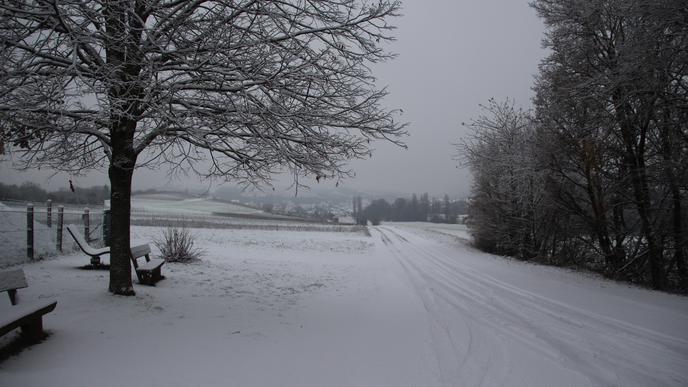 Der Kraichgau bei Zeutern in zauberhaftes Weiß gehüllt.