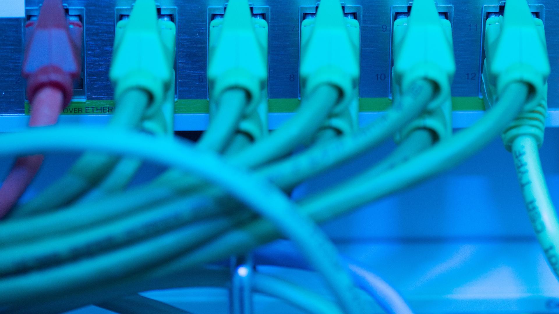 Netzwerkkabel in einem Serverraum.