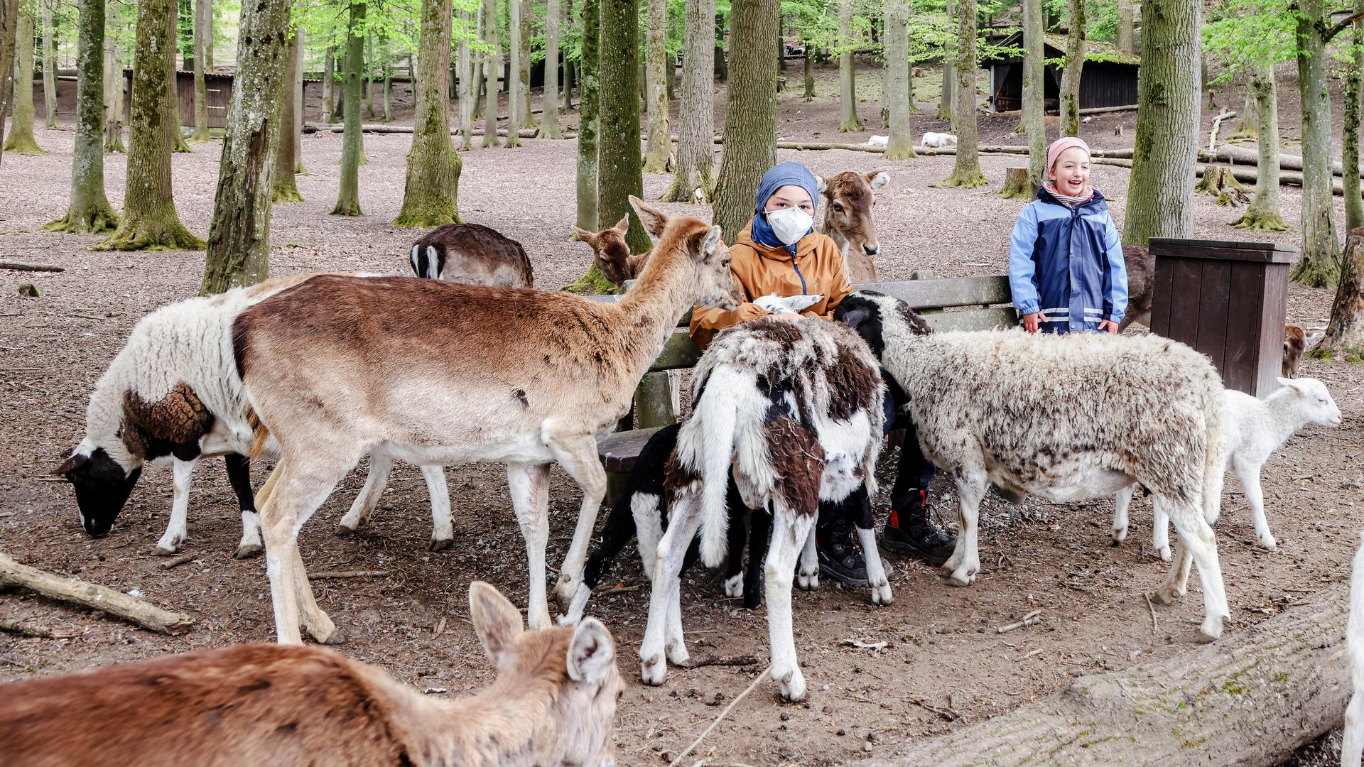 Tierpark Bretten, 1. Mai 2021