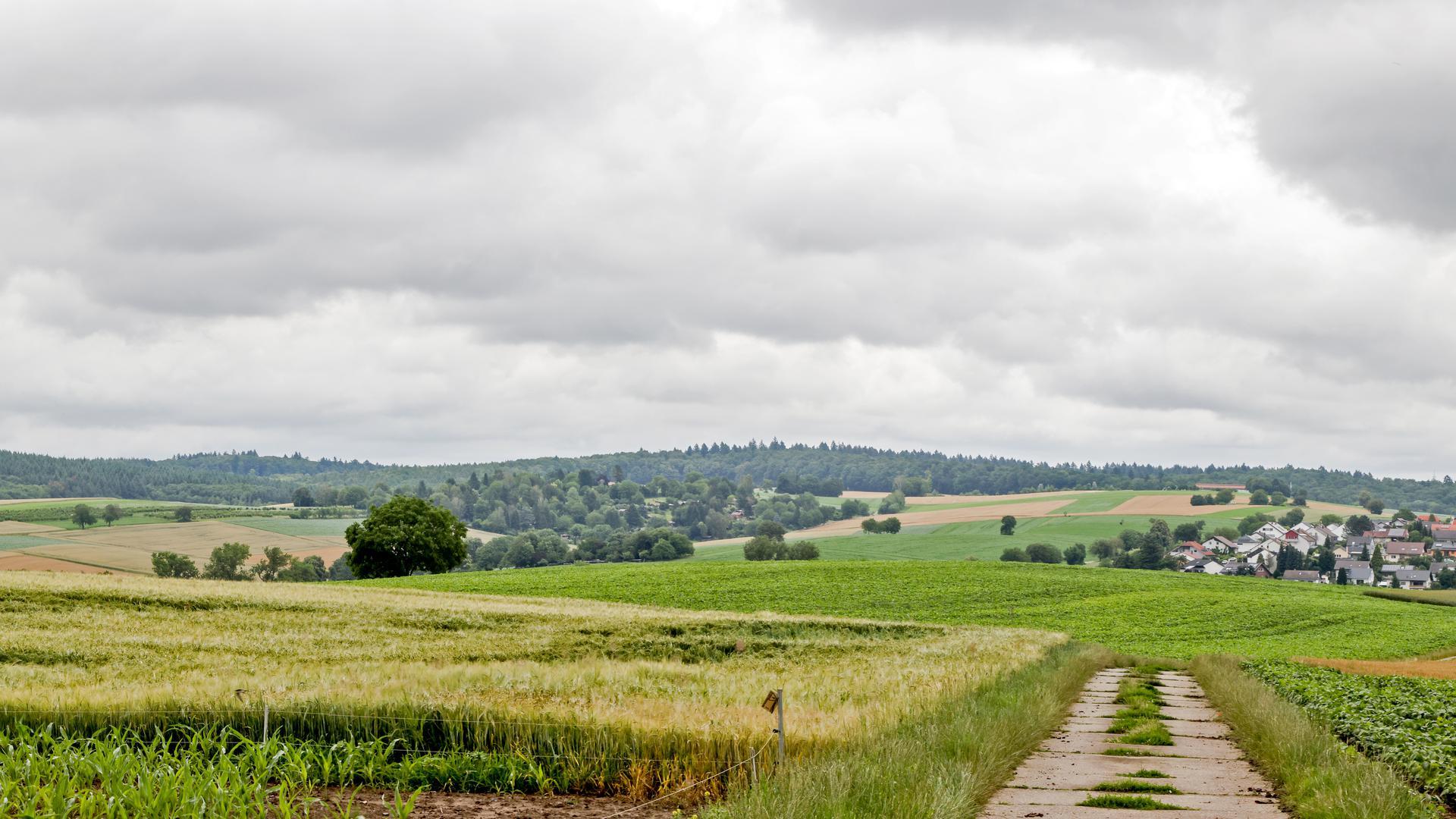 Blick auf Landschaft mit Feldern