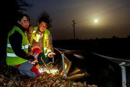 Zwei Frauen sitzen bei Dunkelheit am Amphibienzaun und leuchten mit einer Taschenlampe in einen Eimer.