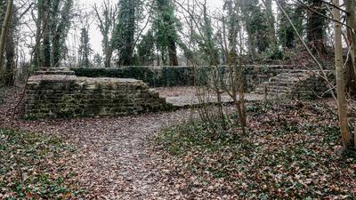 Ruine der Gaugrafenburg im Brettener Burgwäldle