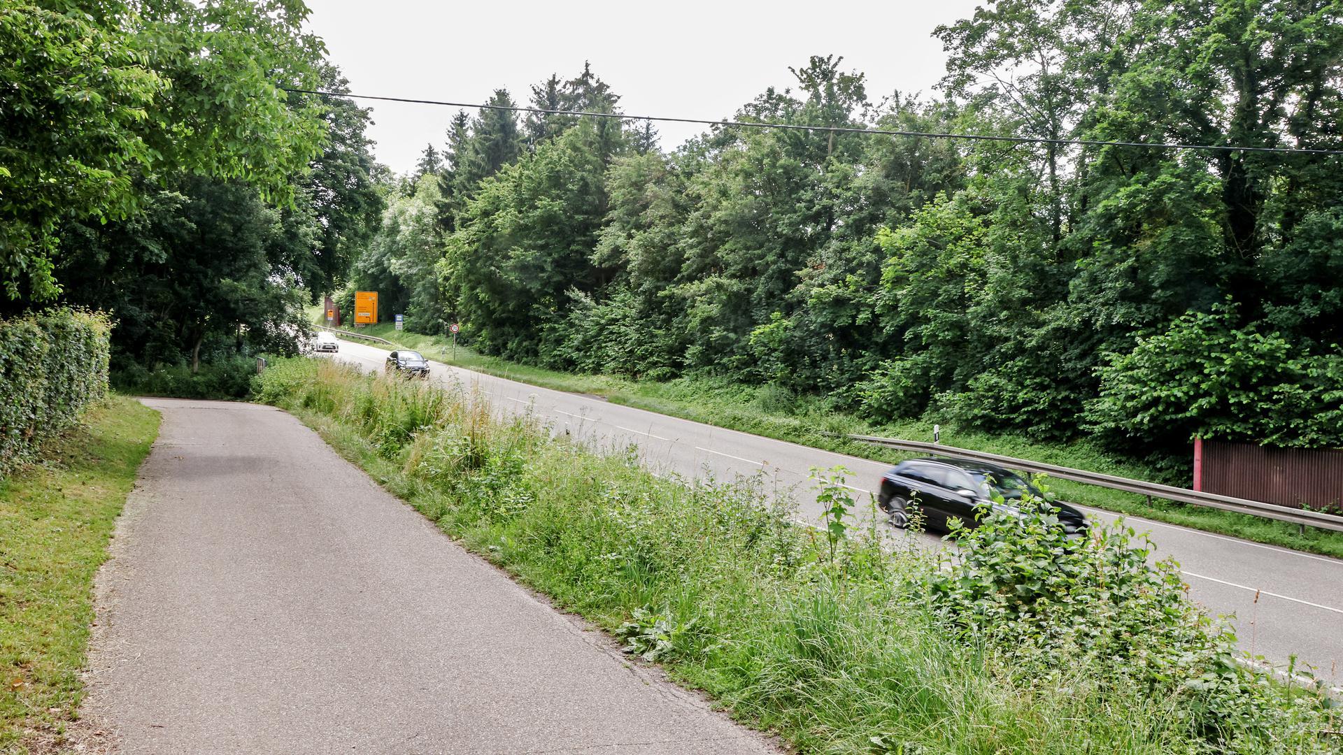 Straße und Radweg