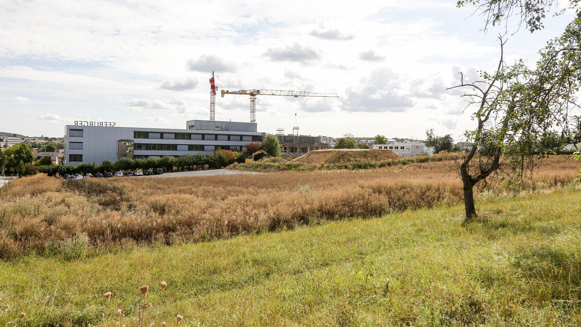 Das brach liegende Gelände hinter dem Gebäude der Seeburger AG.